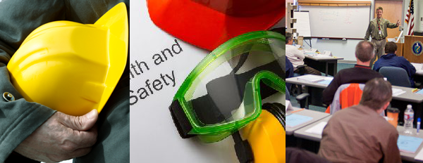 health safety consultant